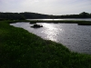 The Estuary near Hook Pembrokeshire by Derek Phillips